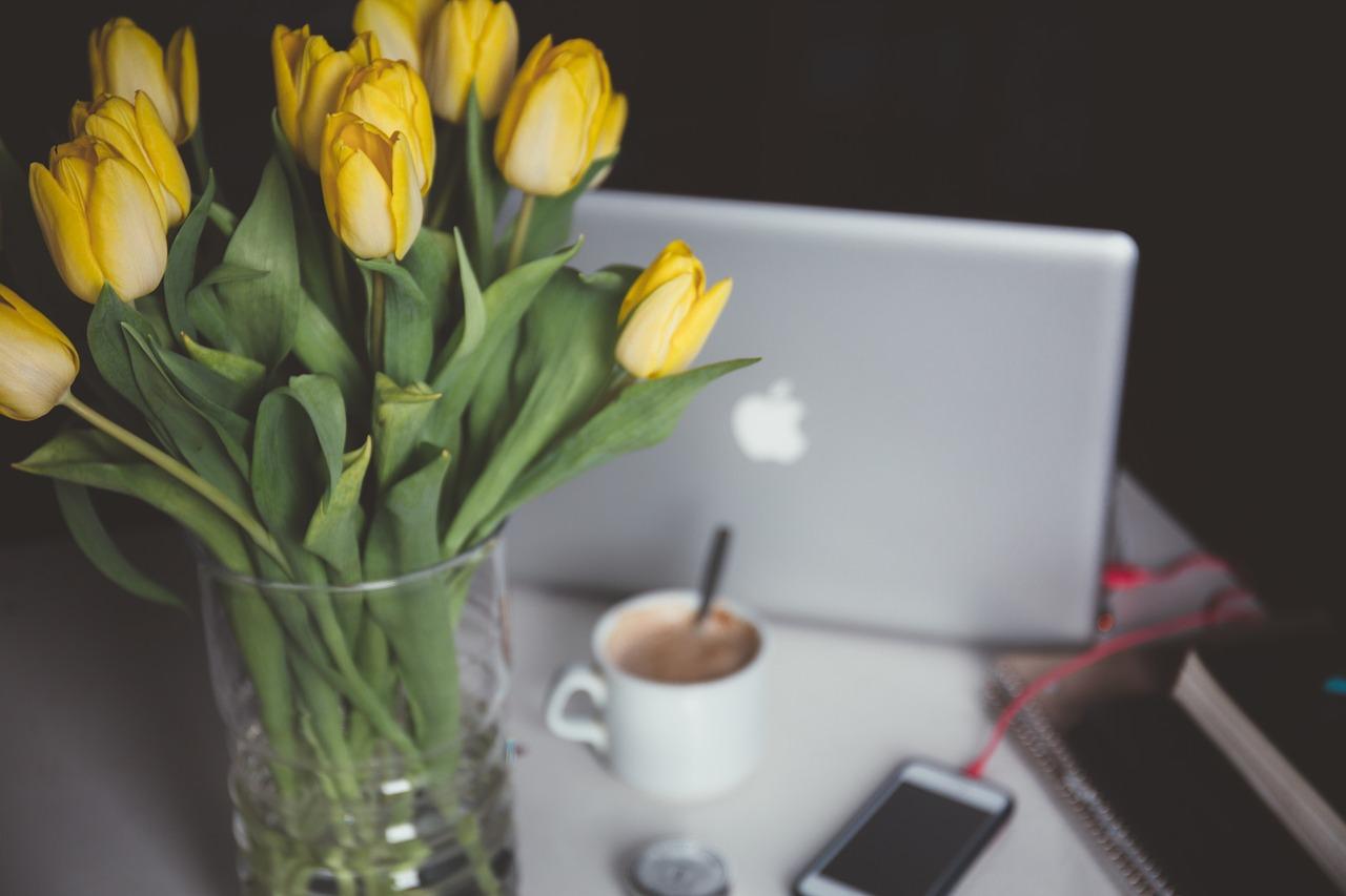 tulips-1208206_1280.jpg