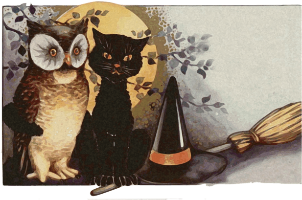owls-1461952_1280