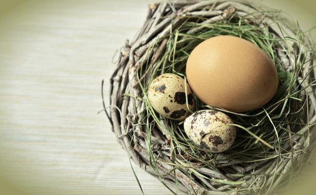 egg-1272803_1280