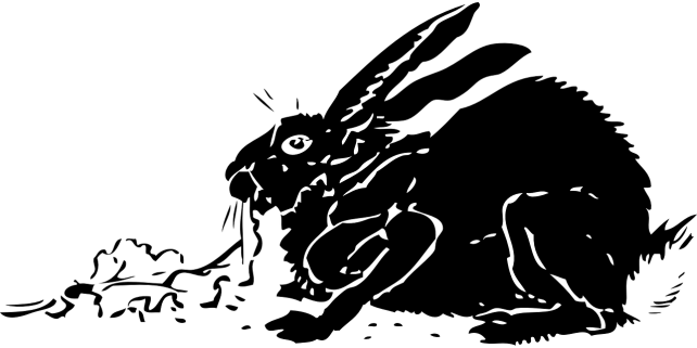 rabbit-32527_1280
