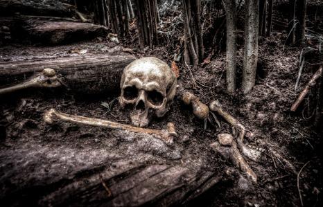 skull-2525192_1280