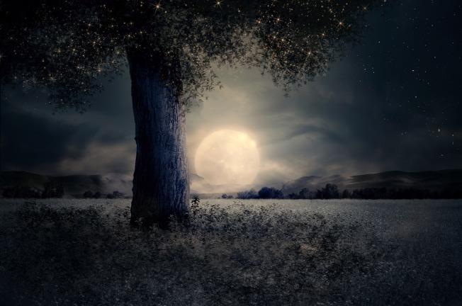 night-2539411_1280
