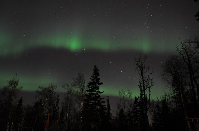 aurora-borealis-443978_1280